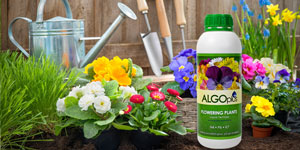 Nutrition for bigger, better, healthier plants - for LESS!