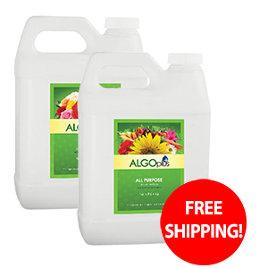 FREE Shipping with 5 liter purchase!