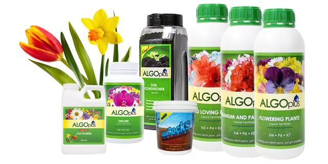 Flowers Add Color And Interest To Any Lawn. Equip Yourself With All The  Necessary Gardening Supplies From Algoplus For A Dazzling And Bright Flower  ...