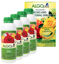 Receive Roses and Flowering Shrubs slow release formula FREE when you buy 4 Algoplus Rose Liquid Fertilizers