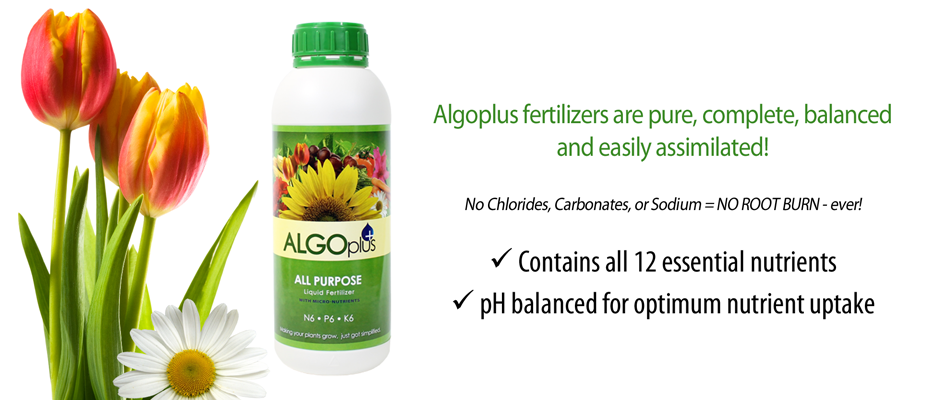 Pure, Complete, Balanced, and Easily Assimilated Fertilizers!